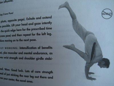 Exercise Profile: Skilfull Hunting For An Elegant Crane Posture
